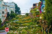 Fotografia Lombard Street San Francisco
