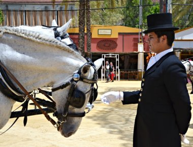 Caring man on horseback