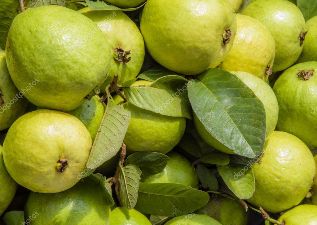 Guava full frame