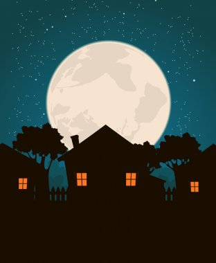 Homes In The Moonlight