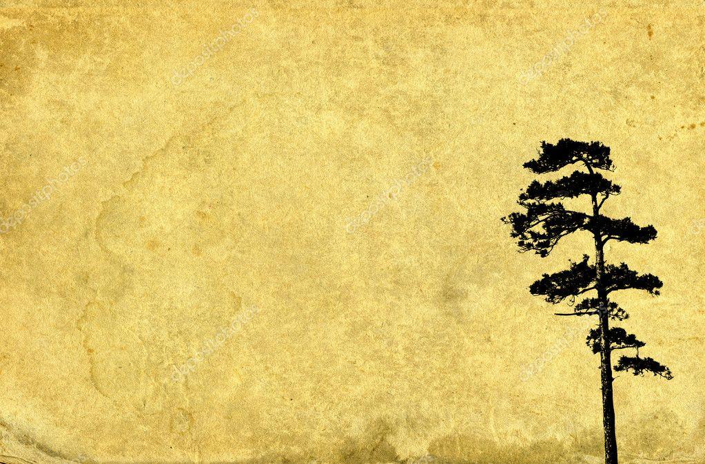 Pine tree illustration on vintage paper