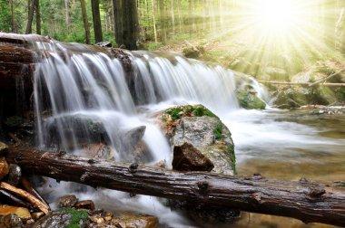 Waterfall in the national park Sumava-Czech Republic stock vector