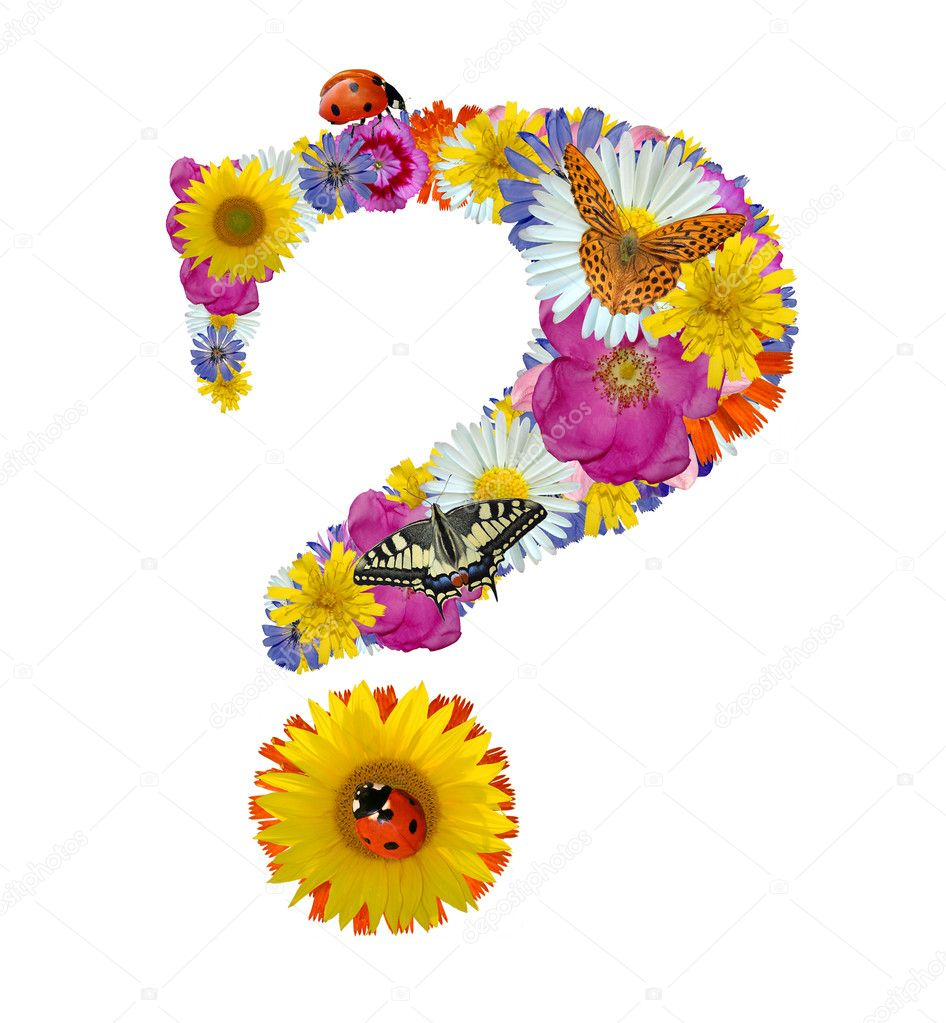 Question mark from flowers with butterflies and ladybug