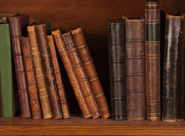 Antique books on bookshelf stock vector