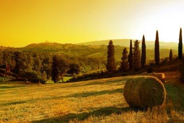 Sunset Tuscany landscape: San Gimignano on the background stock vector
