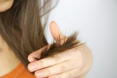 Split ends hair of brunette female model