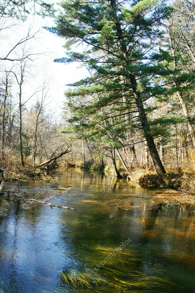 Autumn river scenery 6