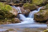 fiume di montagna bella
