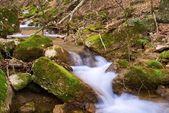 acqua scorrente veloce
