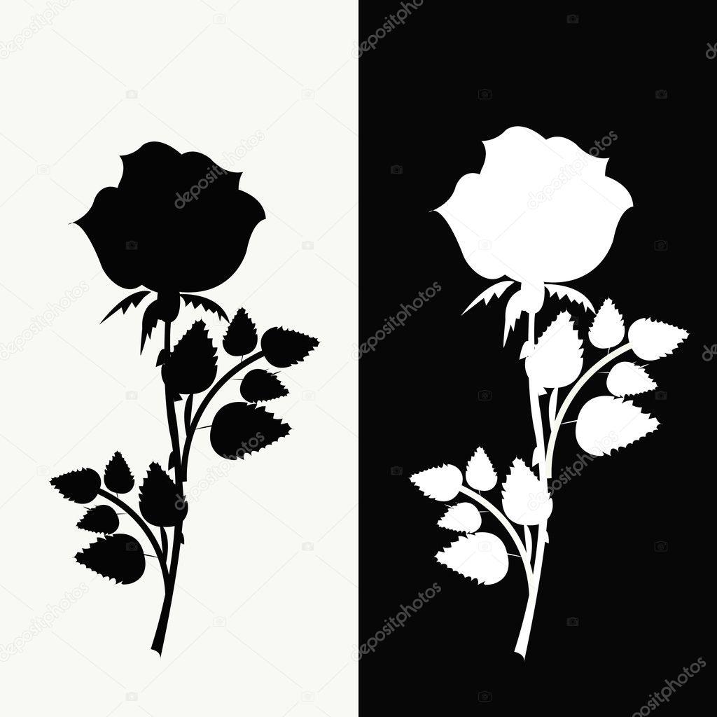 zwei rosen schwarz wei stockvektor ykononova 9201434. Black Bedroom Furniture Sets. Home Design Ideas