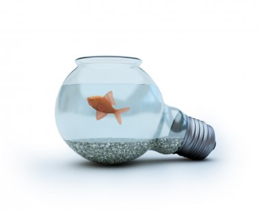 Light bulb with a goldfish