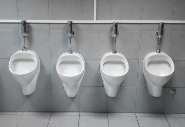 Toilet urinal