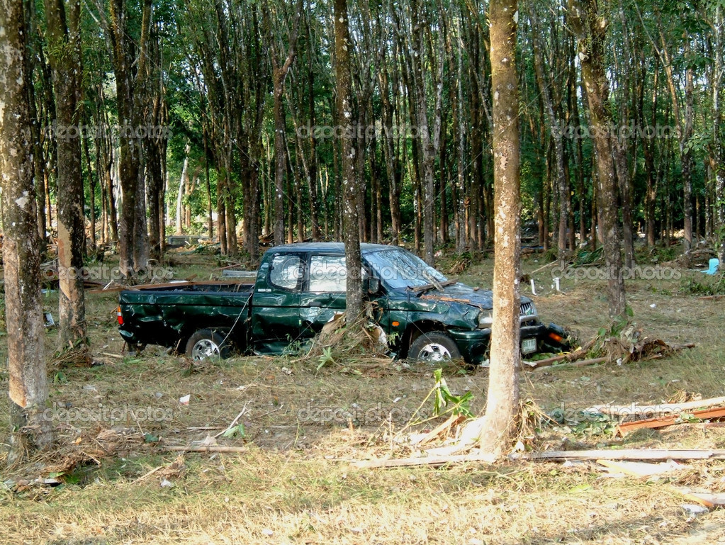 Car wrapped around tree after tsunami, khao lak, thailand