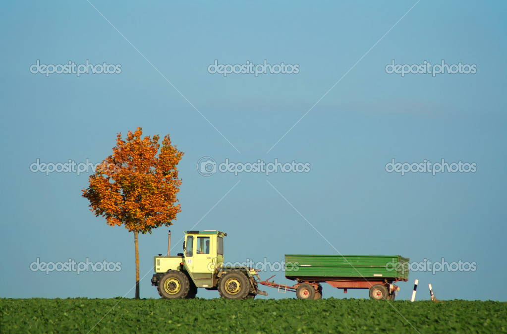 Tractor driving along field in autumn