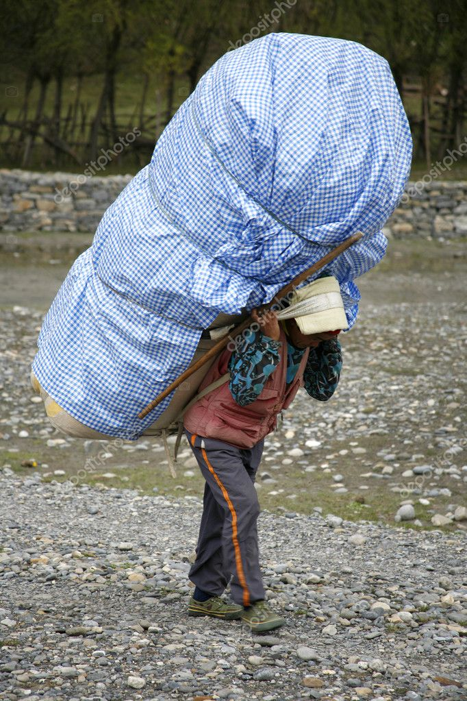 Porters carrying heavy loads on their back, annapurna ...