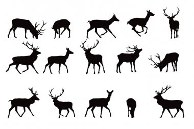 Deer silhouette,vector collection, elements for designers stock vector
