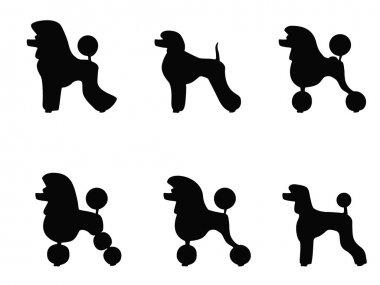 Poodle Clips
