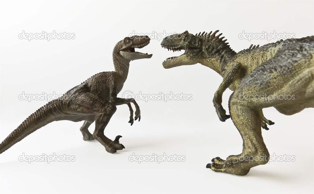 A Velociraptor and Allosaurus Against a White Background