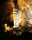 Carlsbad jeskyně národní park, Nové Mexiko