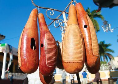 Famous cubbean instrument made from fruit