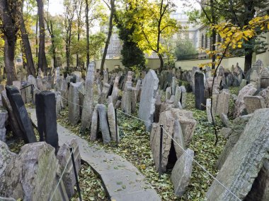 Headstones in the Jewish cemetery, Prague, Czech republic stock vector