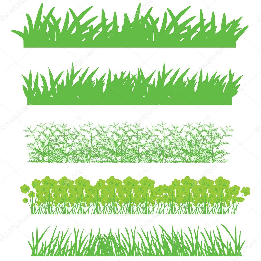 The green grass, shrubs