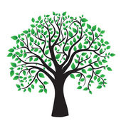 strom izolovaných na bílém pozadí