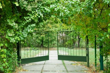 Iron gate in a beautiful green garden