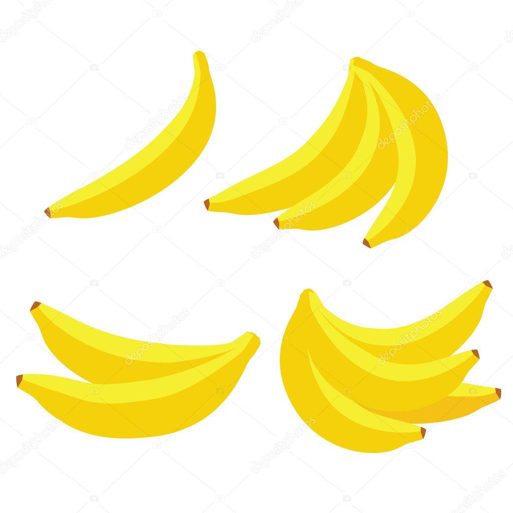 Vector bananas on white background