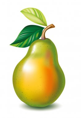 Pear with the leaves