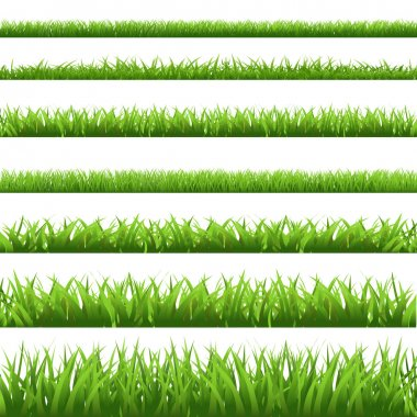Green Grass Set, Isolated On White Background, Vector Illustration stock vector
