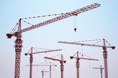 Photo Tower cranes