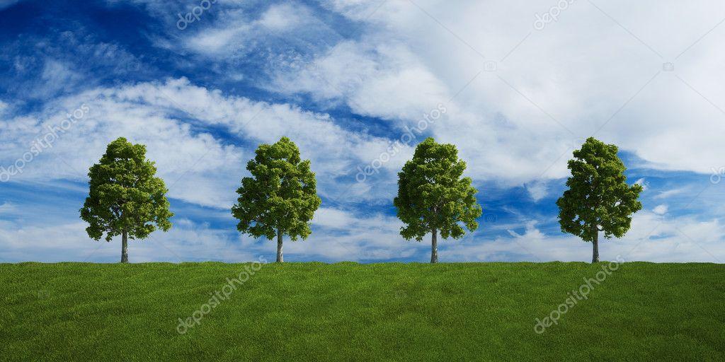 Drzewa Na Wiersz Z Chmury Lato Zdjęcie Stockowe Zentilia