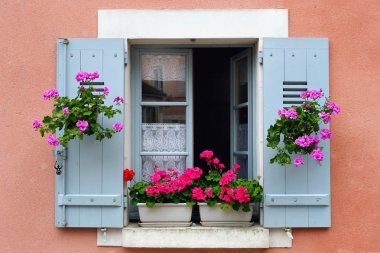 Window box flower arrangement, Burgundy, France