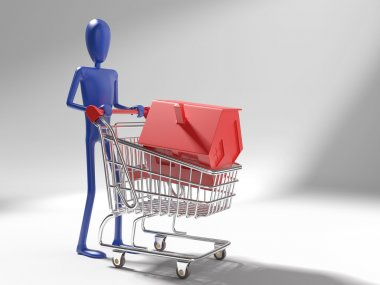 Dummy with house on shopping cart