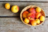 Fotografie saftige Pfirsiche und Aprikosen