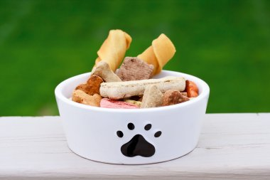 Dog food in dog bowl