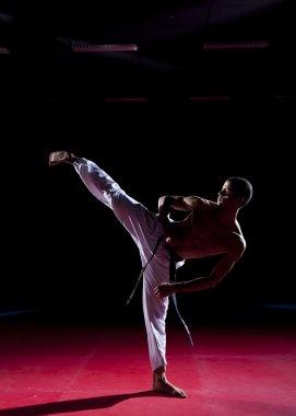 Taekwondo side kick