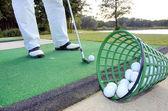 hrát golf