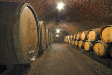 Old wine cave