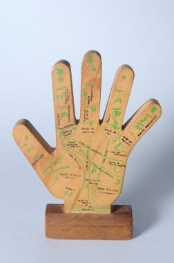Wooden hand palmistry.