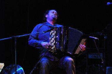 Accordion player perform live
