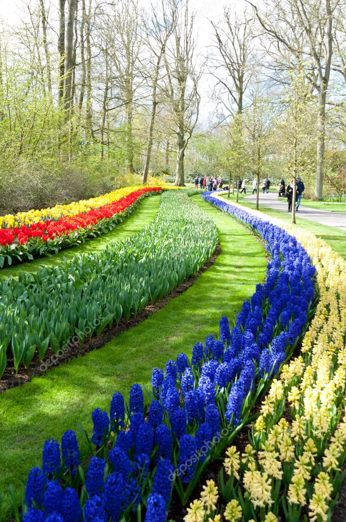 Beautiful spring flower bed in park garden