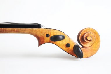 Violin musical instrument orchestra head