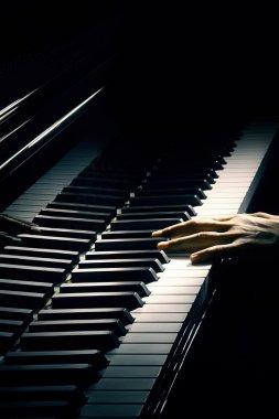Piano pianist hand.