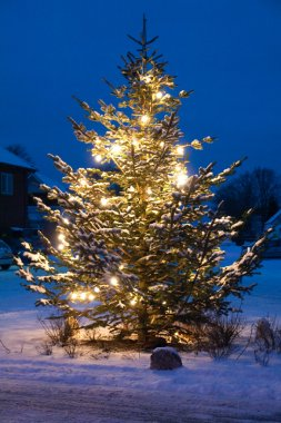 Beautiful Christmas Tree Outdoors white christmas