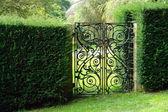 Fotografia giardino cancello in ferro battuto nero