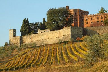 Castle of Brolio and vineyards in Chianti