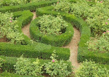 Detail of formal italian renaissance garden