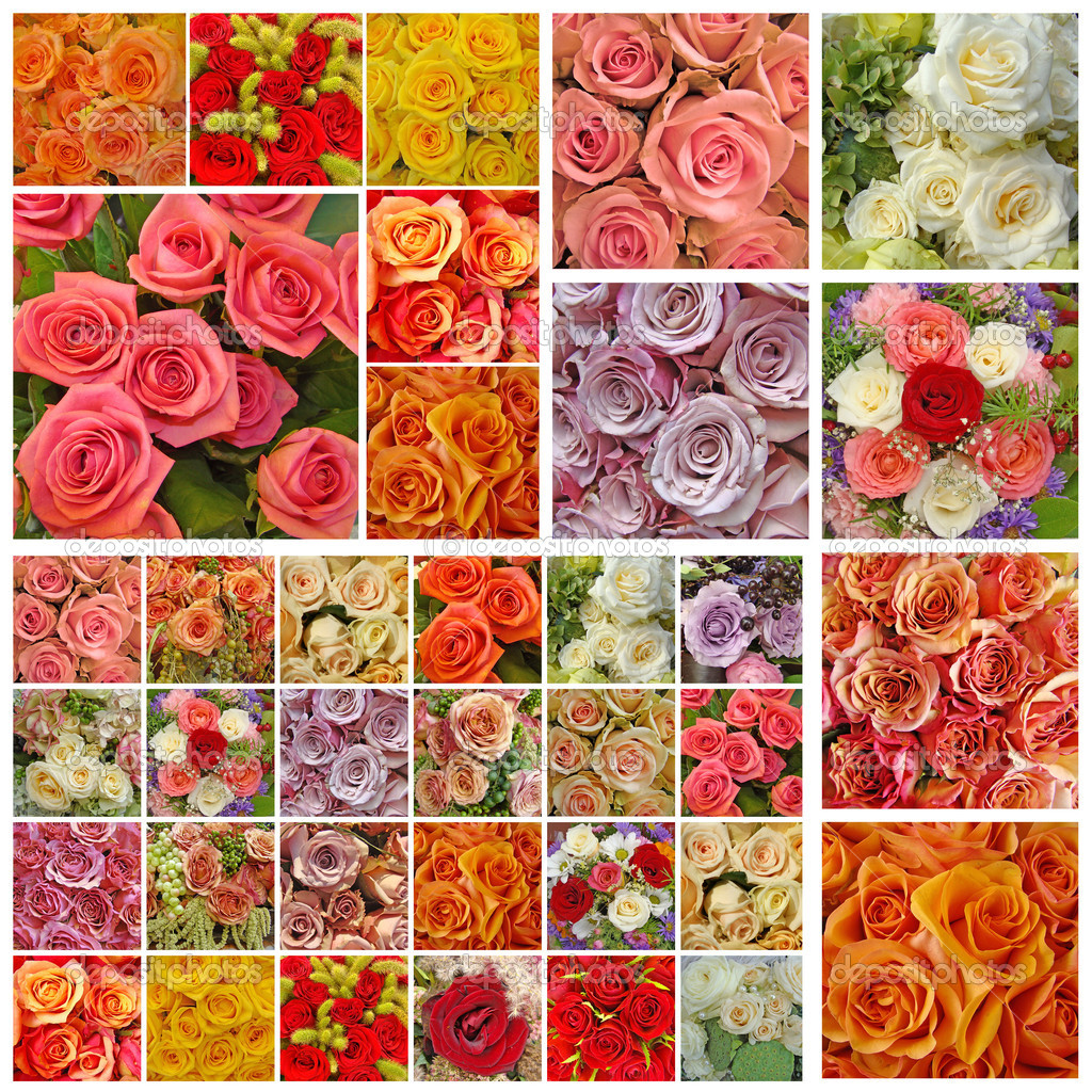 Collage with plenty roses